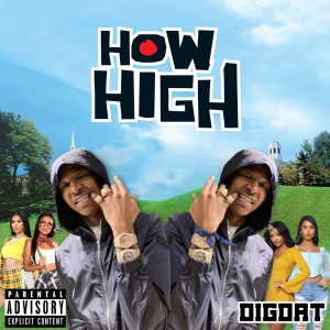 Album How High from DigDat