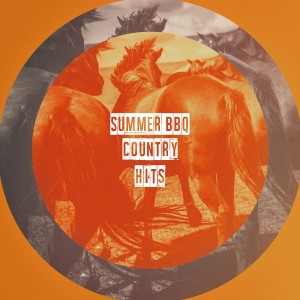 Album Summer BBQ Country Hits from Country Music Heroes