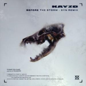 Before The Storm (SYN Remix) dari Kayzo