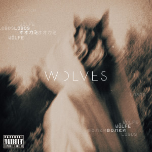 Album Wolves from Missio