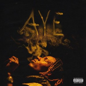 Listen to Aye (Explicit) song with lyrics from Fetty Wap