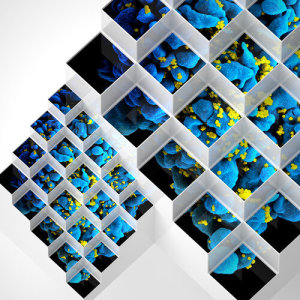 Album Liquid Geometries in Dub from Bluetech