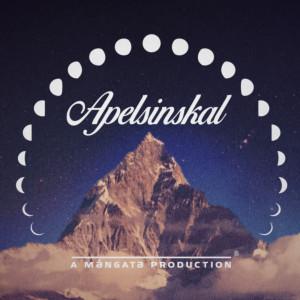 Album Apelsinskal from Tjuvjakt