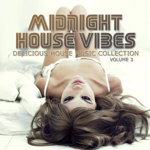 Album Midnight House Vibes, Vol. 3 from Various Artists