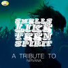 Ameritz - Tribute Album Smells Like Teen Spirit (A Tribute to Nirvana) Mp3 Download