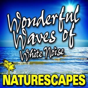 Naturescape的專輯Wonderful Waves of White Noise (Nature Sounds)