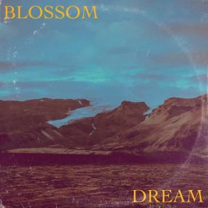 Album Dream from Blossom