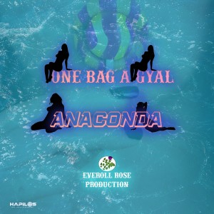 Album One Bag a Gyal from Anaconda