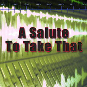 Album A Salute To Take That from The Hitmakers