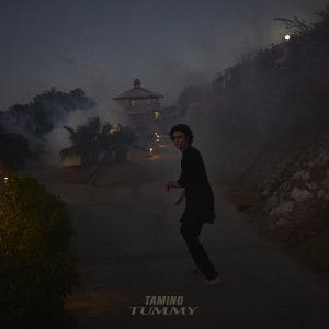 Album Tummy from Tamino