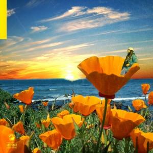 Album California Poppy 2 from Rexx Life Raj