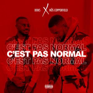 Album C'est pas normal from Doks