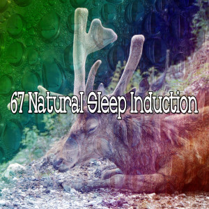 Album 67 Natural Sleep Induction from Spa Music Paradise