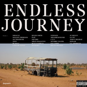 Album Endless Journey from Various Artists