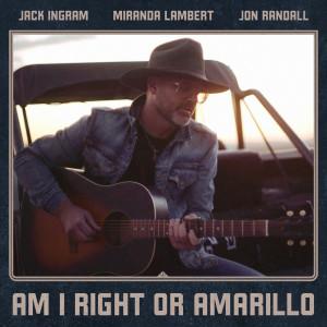 Album Am I Right or Amarillo from Miranda Lambert