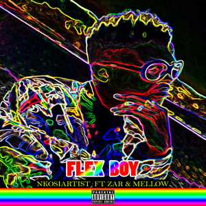 Album Flex Boy from NkosiArtist