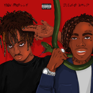 Album Suicidal (Remix) [feat. Juice WRLD] from YNW Melly