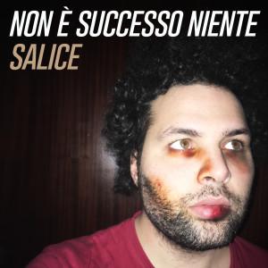 Album Non è successo niente from Salice