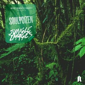 Album Jungle Images from SoulPoizen