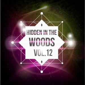 Hidden In The Woods Vol.12
