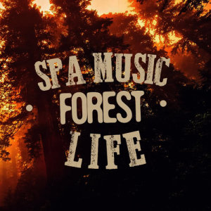 Album Spa Music: Forest Life from SPA Music