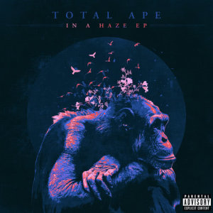 Album In a Haze (Explicit) from Total Ape