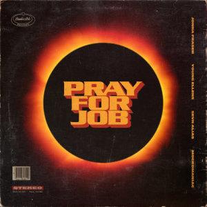 Album Pray For Job from MocroManiac