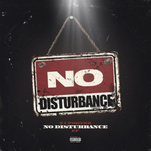 Album No Disturbance from TJ Porter