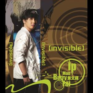 Invisible 2006 Barry Ip (叶文辉)