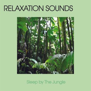 Relaxation Music的專輯Sleep By The Jungle