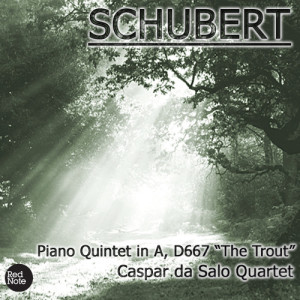 Listen to Piano Quintet 'The Trout' in A, D.667: II. Andante song with lyrics from Caspar Da Salo Quartet
