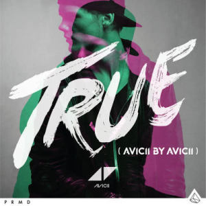 Listen to Hey Brother song with lyrics from Avicii