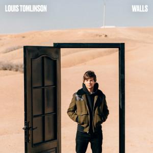 Download Lagu Louis Tomlinson - Walls