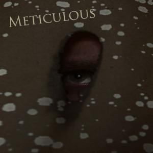 Album Meticolous from Morris DJ