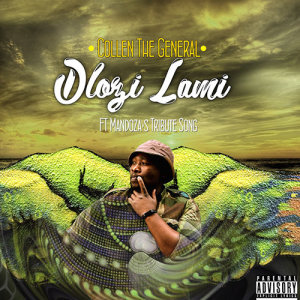 Album Dlozi Lami from Collen The General