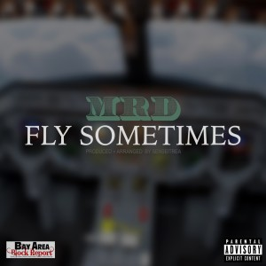 Listen to Fly Sometimes song with lyrics from MRD