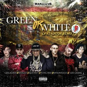 Album Green Or White (La Vendicion Remix) from Alex Fatt