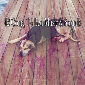 Sleep Baby Sleep的專輯42 Going to Bed Music & Sounds