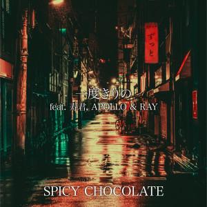 SPICY CHOCOLATE的專輯Ichidokirino