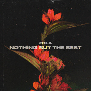 Album Nothing But The Best from Zola
