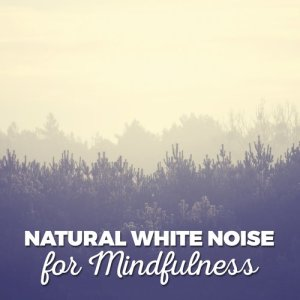 Natural White Noise for Mindfulness