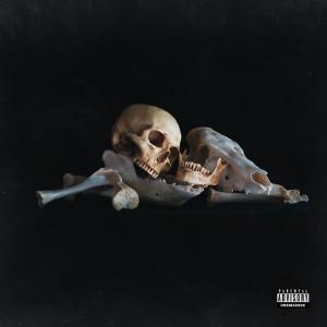 Album Danger (Explicit) from ism