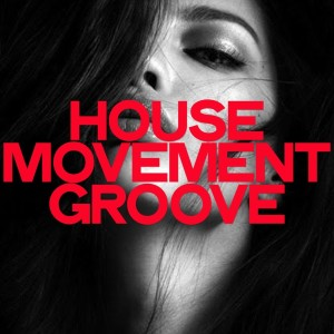 Album House Movement Groove from Various Artists