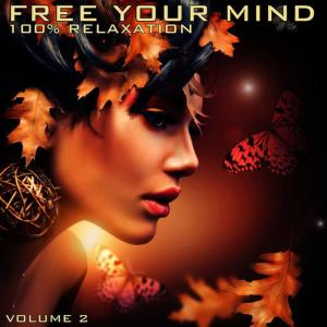 Mind Movers的專輯Free Your Mind: 100% Relaxation, Vol. 2