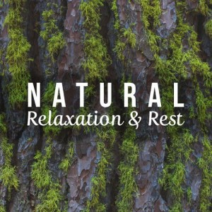 Album Natural Relaxation & Rest from Pure Relaxation
