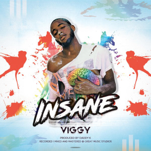Album Insane from Viggy
