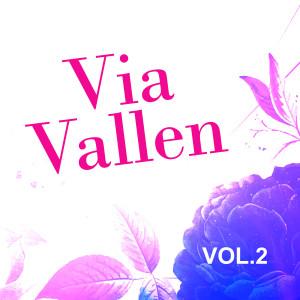Via Vallen, Vol. 2 dari Via Vallen