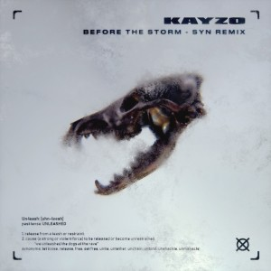 Album Before The Storm (SYN Remix) from Kayzo