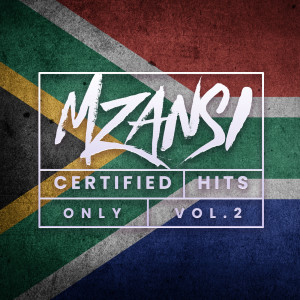 Album Certified Hits Only: Vol 2 from Various Artists