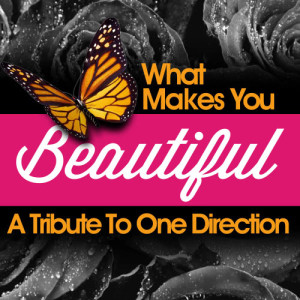 Album What Makes You Beautiful - A Tribute to One Direction from Future Hit Makers